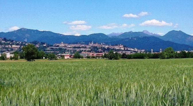 L'Associazione WWF Bergamo Brescia Onlus ha presentato ai Comuni di Bergamo e Stezzano lo studio sui corridoi ecologici che interessano il Parco Agricolo Ecologico Madonna dei Campi.