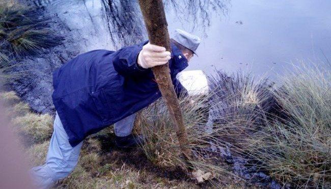 Serle, sversò 80 litri di olio nello stagno dei rospi: indagato