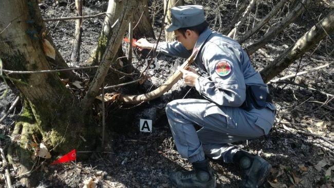 Incendi nei boschi bresciani, sei persone denunciate