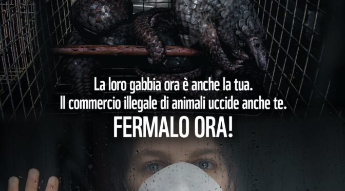 CORONAVIRUS: WWF CHIEDE STOP DEFINITIVO A MERCATI DI ANIMALI SELVATICI VIVI O MORTI