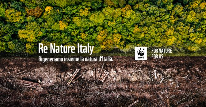 renature italy – rigeneriamo la natura d'italia